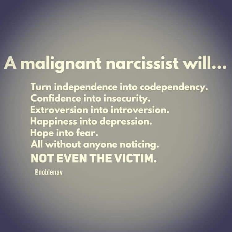 Quora Answers: The Malignant Narcissist